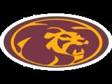 Mountain Pointe HS Logo