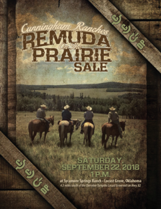 Cunningham Ranches Remuda on the Prairie Sale