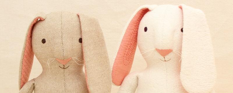 Bo the Bunny