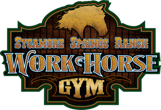 Work Horse Gym